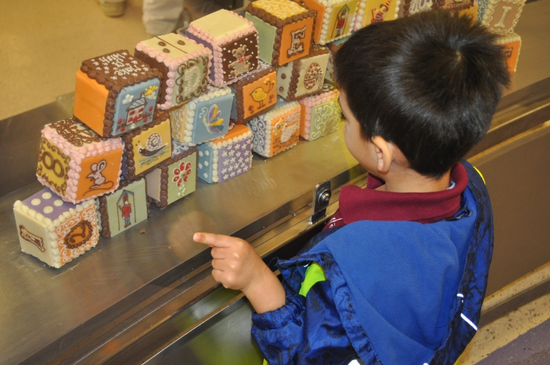 Looking at the cubes of chocolate