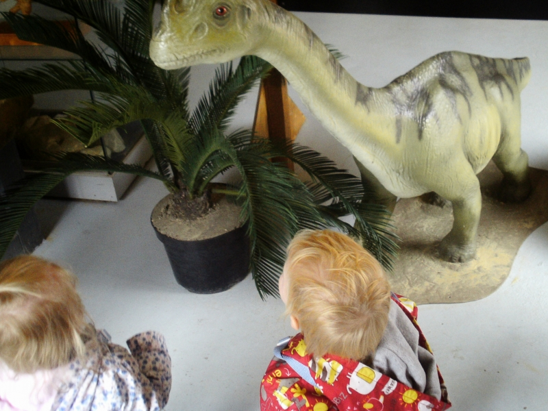 Looking at the dinosaurs mouth