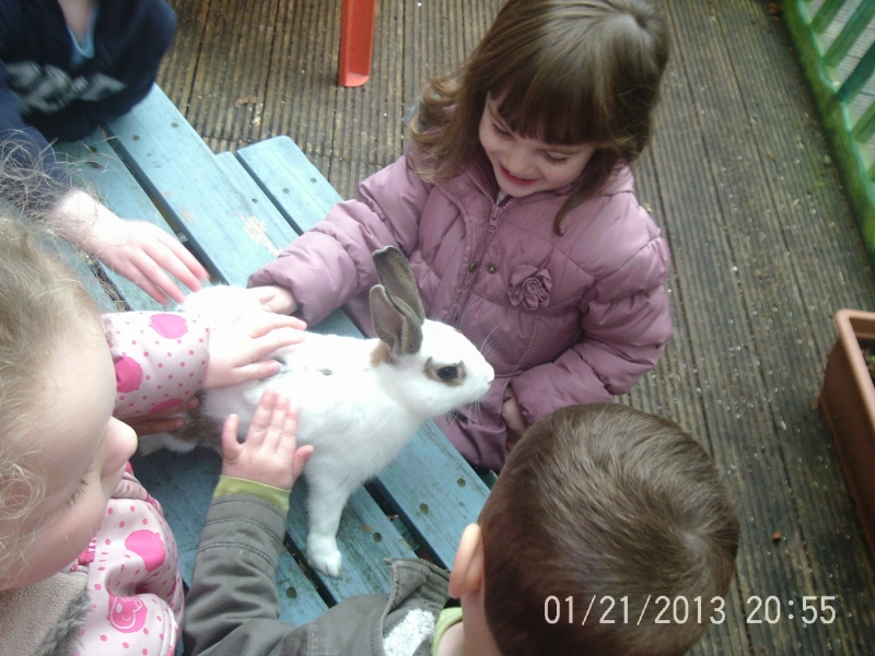 Children got up close to the rabbit