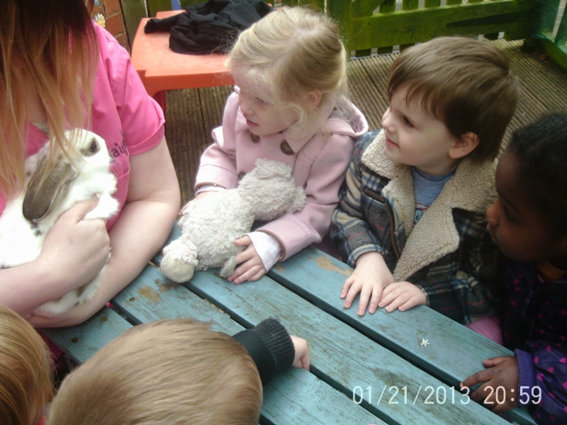 Children looking at the rabbit