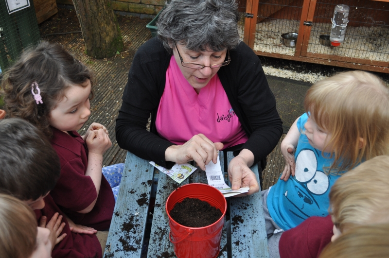 A group of children planted tomato seeds