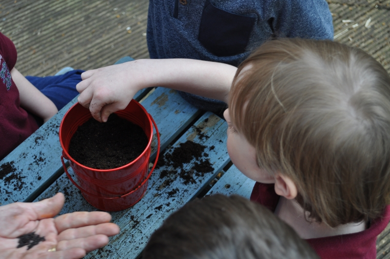 Putting some seeds in the pot