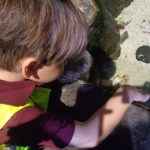Children from Daisykins Rugby Free Nursery visit Sea Life Centre