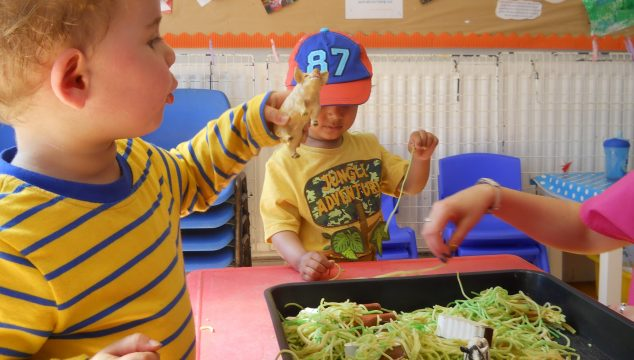 Our Spring Parent/Carer Mornings for Babies and Toddlers